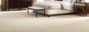 carpet1600-3_opt